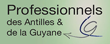 Professionels des Antilles et de la Guyane